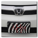 Zebra Car Tag