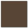Chocolate 12 x 12 Matte