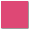 Hot Pink 9 x 24 Glossy