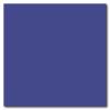 King Blue 12 x 12 Glossy