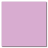 Lilac 12 x 12 Matte