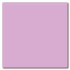 Lilac 12 x 12 Glossy