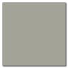 Med. Gray 12 x 12 Glossy