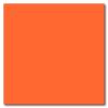 Orange 12 x 12 Matte