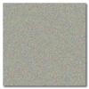 Silver Metallic 12 x 12 Glossy