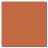 Terracotta 12 x 12 Glossy