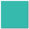 Turquoise 12 x 24 Glossy