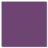 Violet 12 x 12 Glossy